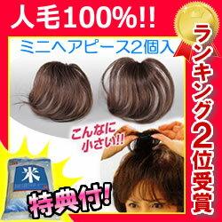 ミニヘアピース2個組人毛100%限定特典送料無料+お米+ポイント部分かつらヘアピース女性用カツラ部分