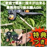 3特典【+お米+用 切り接ぎ職人DX 接木 手軽にカットご家庭で簡単 接木セット 切り接ぎ職人デラックス