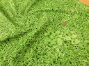 ぷらんぷ☆ちぃくす『芝生でゴロン♪』≪コットンキャンバス≫