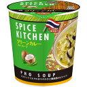 日清食品 スパイスキッチン グリーンカレーフォースープ 30g