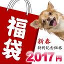 ワンちゃん用品 福袋 【2017年】