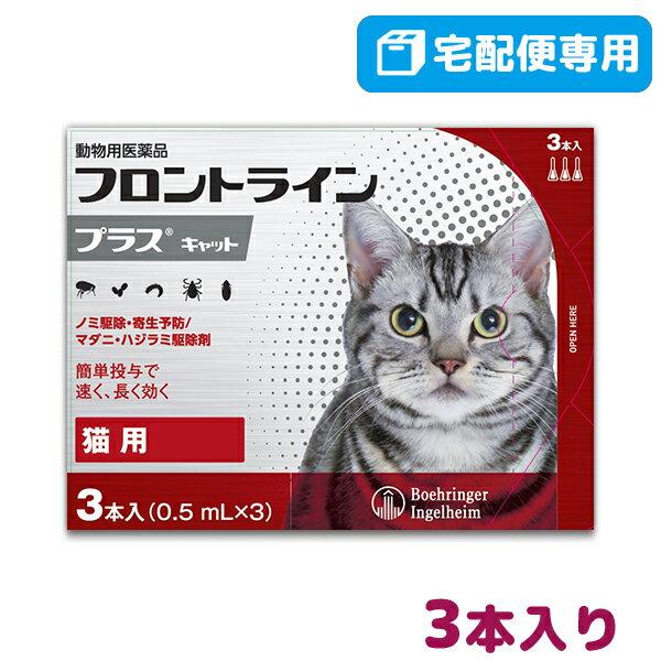 【B】【最大350円OFFクーポン】フロントライ...の商品画像
