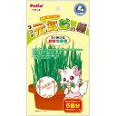 【200円OFFクーポン】Petio ネコの元気草の種 15g×5スティック