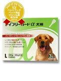 【動物用医薬品】マイフリーガードα 犬用 L 20-40kg用 3本入【あす楽土曜営業】【HLSDU】