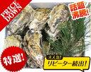 あす楽対応!送料無料!!日本三景松島産 殻付き牡蠣殻付き 殻付き1個牡蠣20個 加熱用 かきカキkaki クール便配送