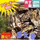 あす楽対応!3kg(約35粒)クール便送料無料!宮城県産 殻付き牡蠣 殻付き 無選別牡蠣