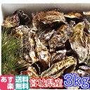 あす楽対応!牡蠣 3kg(約38粒)クール便送料無料!宮城県...