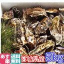 あす楽対応!牡蠣 5kg(約60粒)クール送料無料!宮城県産...