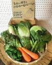 野菜10品以上セット 新鮮な野菜を毎日厳選してお届けします! 【本州・九州・四国は送料無料】【 野菜...