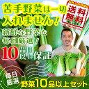 野菜10品以上セット 新鮮な野菜を毎日厳選してお届けします!...