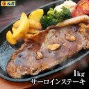 サーロインステーキ10食セット 1kg 100g×10枚 ステーキ サーロイン 米国産牛 最高級 お取り寄せ グルメ食品 お試し おためし 松屋 時短 受験