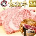 松阪牛 A5 サーロイン 鉄板・焼肉用 400g【送料無料】