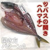 ツバス(ハマチ)開き(冷凍) 1枚 約200-249g 【浜坂産】