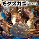 毛蟹 1kg 通販