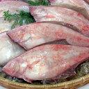 下処理済・赤かれい【冷凍】4尾×約26-28cm程度 1匹付けにちょうど良いサイズです【浜坂産】下処理済みなので、解凍後、すぐに調理できます(赤カレイ・カレイ・鰈)