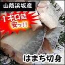 天然 はまち切身【冷凍】1キロ詰(12-16切入)【浜坂産】ハマチ・ワカシ・切り身