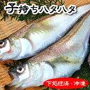 子持ちハタハタ(冷凍) 4-5尾で約400-450g入り(大...