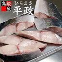 【浜坂産】平政(ひらまさ)切り身(冷凍)3切れ入 (ヒラマサ、切身)