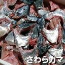 【送料無料セール】サワラのカマ(冷凍) 約1kg 【浜坂産】 (さわら、鰆)