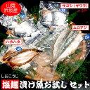 【送料無料】塩麹漬け魚お試しセット【冷凍】ギフトに(さわら、ハタハタ、ムロアジ)(詰め合わせ、サワラ、鰆、はたはた、白ハタ、アジ、鯵、酒のあて、肴)