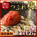 紀州南高梅 2種類から選べるつぶれ梅 【はちみつ味 1.2kg(300g×4)/ まろやか味 (うす塩) 1kg (500g×2)】