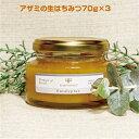 イスラエル産 「アザミの生はちみつ70g×3」イスラエルのガラリアという場所のみに咲くいているアザミの蜜から採られた混ぜ物なし、完全非加熱のハチミツです。