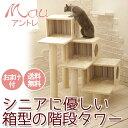 シニアねこ向けコンパクト/安心の階段式/キャットタワー/据え置き/アントレ/仔猫・太っちょも