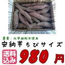 有機安納芋!今だけ送料無料!【農薬・化学肥料不使用】こだわり栽培安納芋「安納芋子」ちびサイズ1.5キロつめあわせ