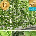 【あす楽】グリーンフェンス 1m×3m[緑のカーテン 目隠し グリーンカーテン 目隠しフェンス ベラ