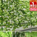 グリーンフェンス 1m×2m[緑のカーテン 目隠し