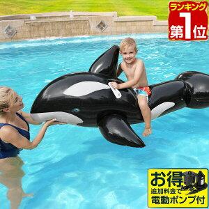 1年保証 フロート クジラ 浮き輪 ジャンボ ホエールラ