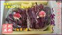 【予約】おかやま次世代ぶどう 紫苑(しえん)2キロ箱2房入 岡山産 ※10月下旬ごろより順次発送