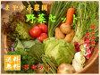 【野菜セット】まやかみ農園 おまかせ野菜詰め合せS 8品から10品【ラインナップよりリクエストOK】送料無料