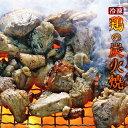 宮崎名物 焼き鳥 鶏の炭火焼100g×6 手仕込み+冷凍でな