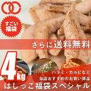 [ 訳あり 送料無料 ]はしっこ 福袋【Cセット】 6種 4...