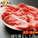 クーポンで500円OFF ギフト 肉 牛肉 A4 〜 A5ラ...