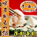 『博多牛もつ鍋セット 3〜4人前(国産牛もつ500g/スープ1kg/ちゃんぽん麺3玉)』 2セット同梱でおまけ モツ鍋 ホルモン鍋 小腸