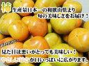 沖縄美味御膳 黒豚カレー180g×2個セット【メール便対応商品・1個まで】