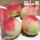 桃 ご家庭用 和歌山県産 約1kg 3〜4玉入り 訳あり 送...