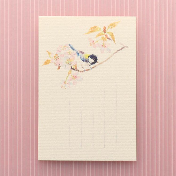 季節のはがき[春]四十雀(しじゅうから)と山桜