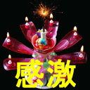 花火と音で演出 花びらが開花 ドリームキャンドルデラックス 誕生日用 【あす楽対応】