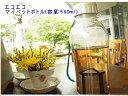 エコ水筒(マイ携帯水筒)携帯ekoボトル580ml エコエコMyペットボトル飲む人にも環境にも嬉しい お出かけのお供に!