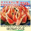 ボイルずわい蟹 爪肉切れ目入特大 750g