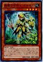 【中古】[TCG]遊戯王 LVAL-JP018N 森羅の花卉士 ナルサス(20131116)【RCP】