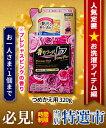 特報!なんと!あの香りつづくトップ Aroma Plus(アロマプラス) プレシャスピンク つめかえ用320gが、タイムセール特価!(お一人さま1個まで) しかも毎日ポイント2倍!