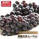 ぶどう スチューベン 『津軽スチューベン/1kg前後』 ブドウ 葡萄