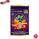 ブルーベリー サプリ ルテイン ブルーベリー&ルテインα(アルファ) 31粒 機能性表示食品 5袋セット