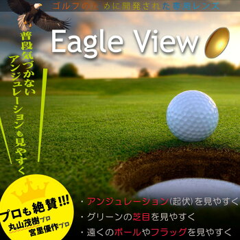 �ڥ�����ѥ�󥺡�EagleView/��������ӥ塼/SPL��2��1�ȡˡڥ�����ѥ��󥰥饹������ѥ�󥺥�����ѥᥬ�͡�4�����ֻ�����̵��,/2��1��/eagleview,��������ӥ塼���,