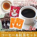 【お得なクーポン配布中】福袋 ドリップバッグコーヒー カレル...