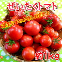 フルーツトマト★ぜいたくとまと★約1kg贅沢トマト